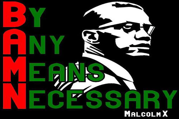 malcolm x by any means necessary essay
